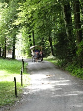 Ballenberg, Freilichtmuseum der Schweiz: En caballos para el recorrido