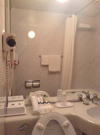 Palace Hotel Tachikawa: WC