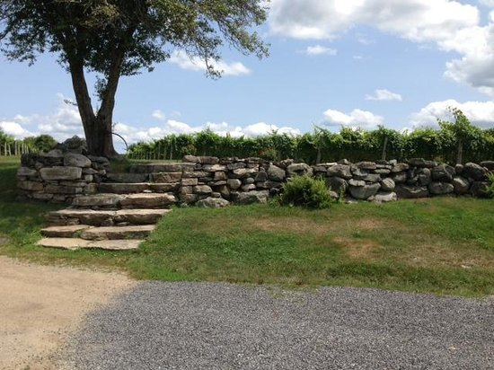 Jonathan Edwards Winery: Stone wall beyond the deck.