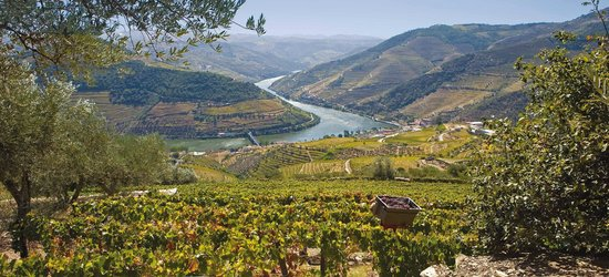 Paco de Arcos, Portugal: Douro River - Wine country