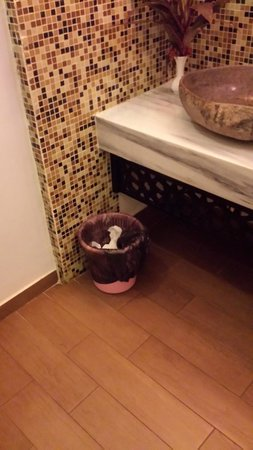 Hideaway of Nungwi Resort & Spa: The lovely pink plastic bin (why not wooden! Details again)