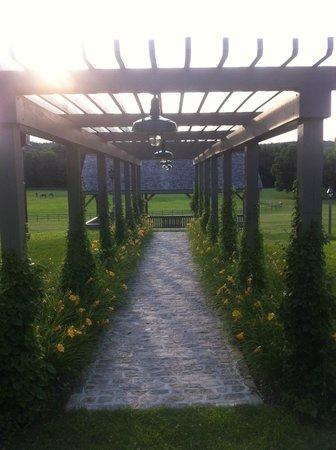 Old Stone Farm: The perfect pergola