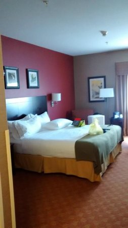 Holiday Inn Express Wauseon: King room