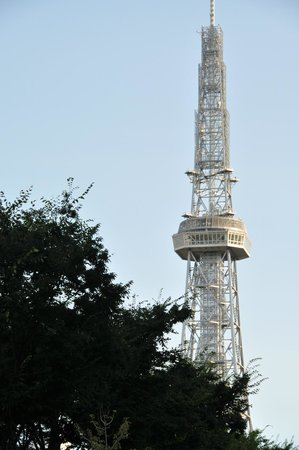 Nagoya TV Tower : 中距離