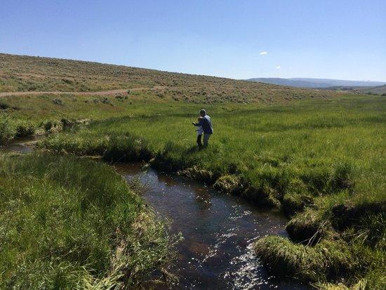 The Lodge and Spa at Brush Creek Ranch: Creek fishing