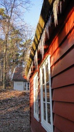 Musée folklorique norvégien : Ice