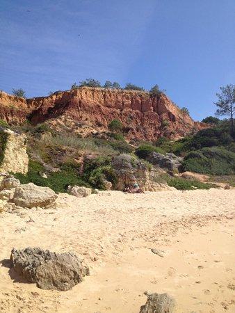 Aparthotel Oceanus : Beach