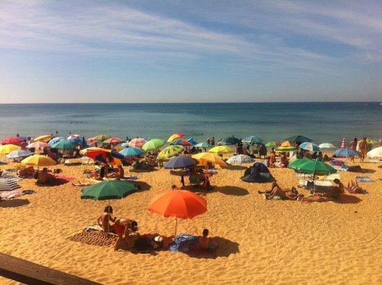 Aparthotel Oceanus: Beach
