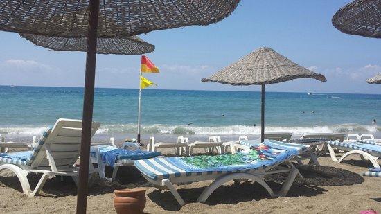 Saphir Hotel: the beautiful beach