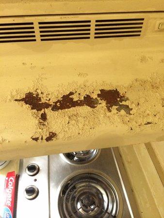Intown Suites Piedmont: Looks like lead paint