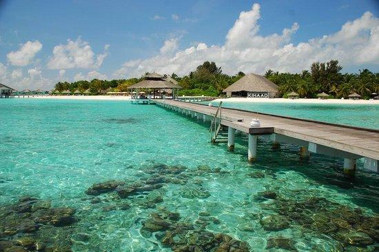 Kihaad Maldives: kihhad