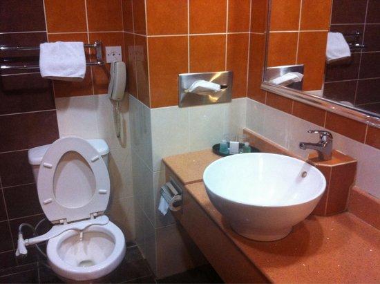 Hotel Sandakan : A toilet