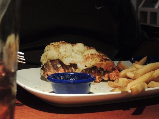 Red Lobster : e ela já no prato!