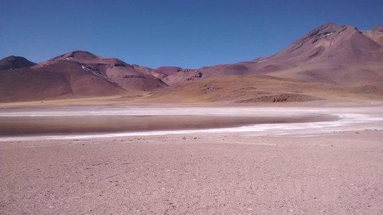 Lagunas Miscanti y Miniques: lagunas miñiques y miscanti