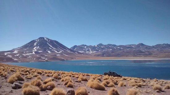 Lagunas Miscanti y Miniques: laguna miñiques y miscanti