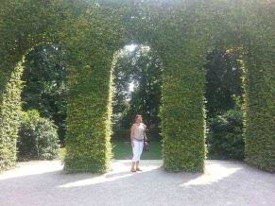 Musée Rodin : jardim do Museu