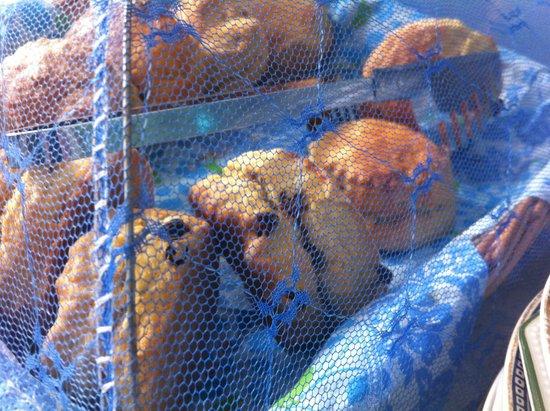 Blue Bicycle Tea Rooms: Fresh scones