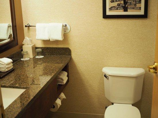 Portland Marriott City Center : Bathroom in Room 1506