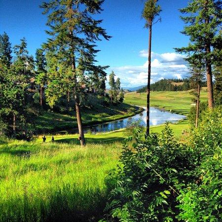 Predator Ridge Resort : View from the balcony