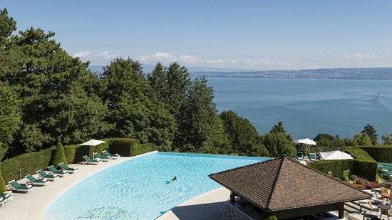 la piscine avec vue sur le lac l man photo de h tel. Black Bedroom Furniture Sets. Home Design Ideas