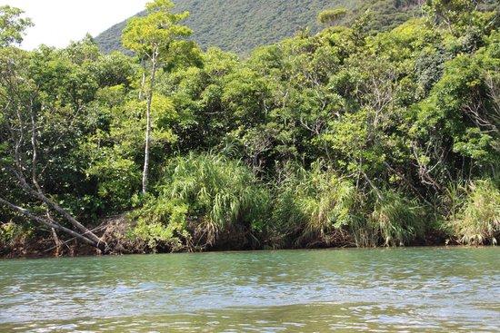 Sangojaya : 風景