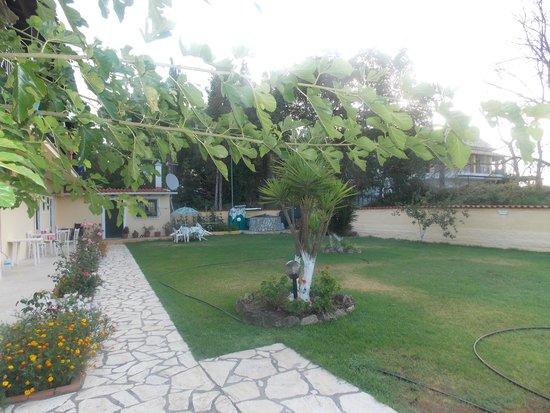Eleana Studios & Apartments: View of grounds