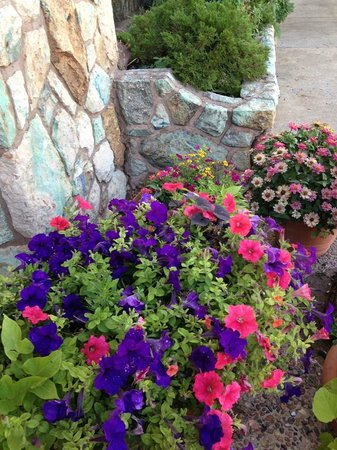Jacob Lake Inn : Flowers in front of the store