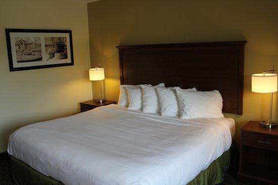 Nichols Inn of Hastings: King guest room