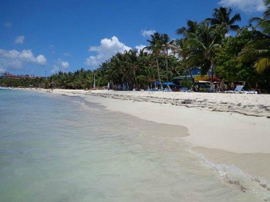 Sol Caribe Campo: Playa aledaña a la del hotel y el hotel al fondo
