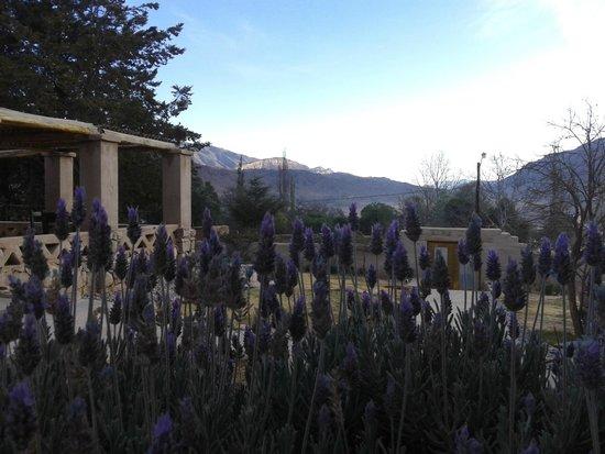 Posada de Luz: vista desde el jardin de la entrada de la posada