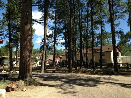 Jacob Lake Inn: The playground- very kid friendly atmosphere