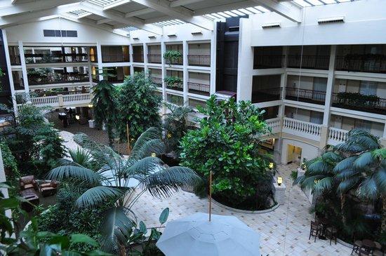 Embassy Suites by Hilton Colorado Springs : Atrium view from top floor.