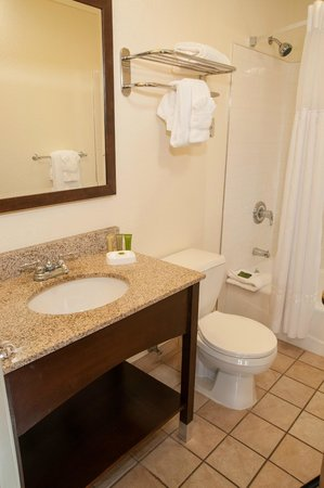 Best Western Plus Eagle Lodge & Suites: Bathroom