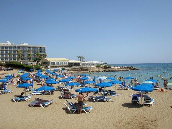 Seagull Apartments: Пляж недалеко от отеля