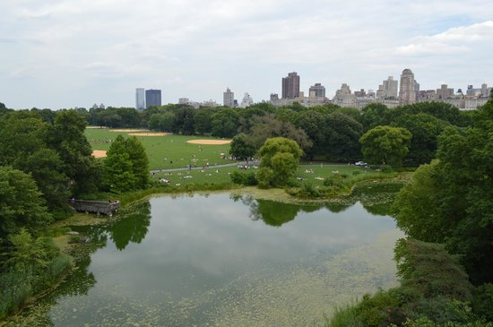Central Park Sightseeing: A break from our bike ride