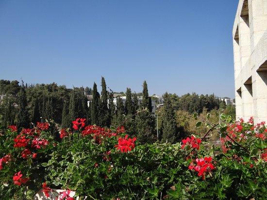 Yitzhak Rabin Guest House: Вид с террасы
