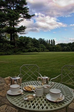 Middlethorpe Hall & Spa: Afternoon tea, but spoiled by the noisy dual-carriageway just beyond the end of the garden.
