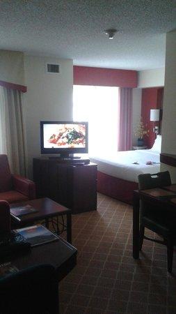 Residence Inn Seattle Bellevue/Downtown: Swivel TV