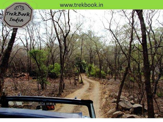 Ranthambore National Park: Route 1