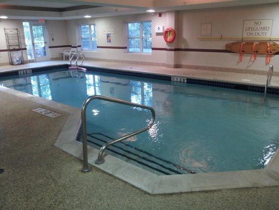 Residence Inn Toronto Markham: Pool