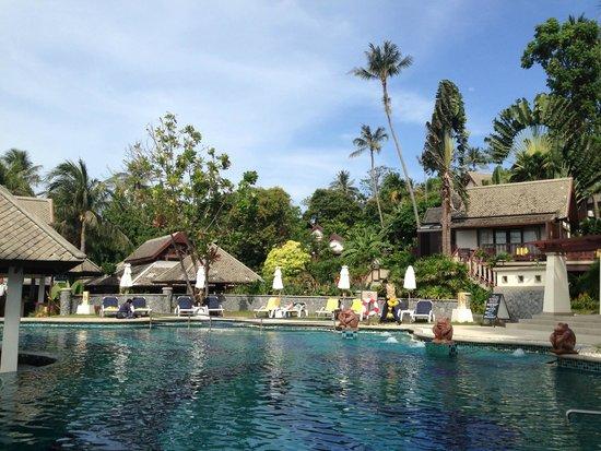 Centara Villas Samui: สระว่ายน้ำกว้าง ล้อมรอบด้วยต้นมะพร้าว