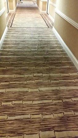 Flamingo Las Vegas Hotel & Casino: Hallway Carpeting