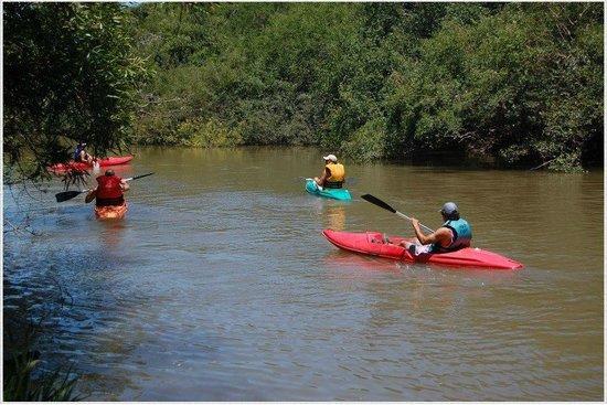 Termas de Guaychú: Paseos en kayak en el Arroyo Gualeyan