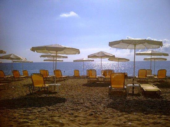 Tara Beach Hotel: Tara Beach