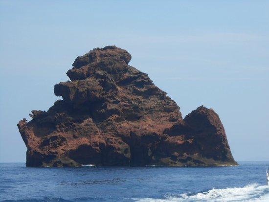 SARL Decouvertes Naturelles: Reserve Naturelle de Scandola en Corse