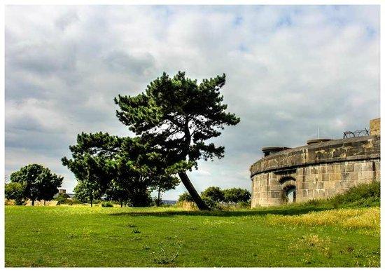 Coalhouse Fort: Lovely Walks around the Fort