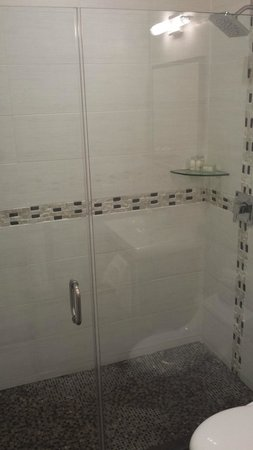 The Fritz Hotel: Shower