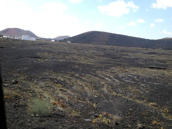 Hesperia Lanzarote: The countryside