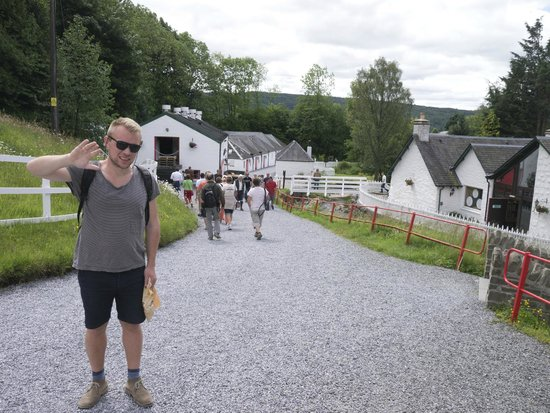 Edradour Distillery: Edradour - distillery etc to the left, tasting room and bar to the right