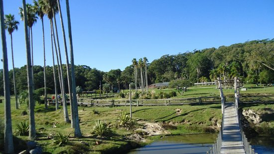 Fortaleza de Santa Teresa: No parque onde a fortaleza se localiza